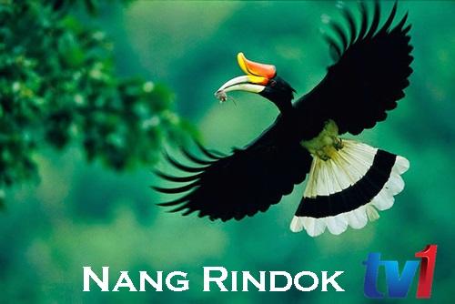 Nang Rindok TV1 RTM Sarawak siar program pembangunan rakyat Sarawak