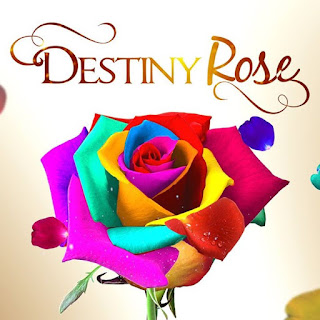 destiny rose pinoy channel