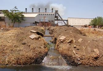 تلوث المياه قنبلة موقوتة تهدد حياة المصريين