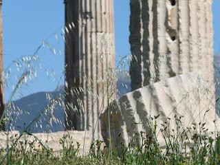Atene, i resti dell'Agorà a primavera - Foto di Elisa Chisana Hoshi