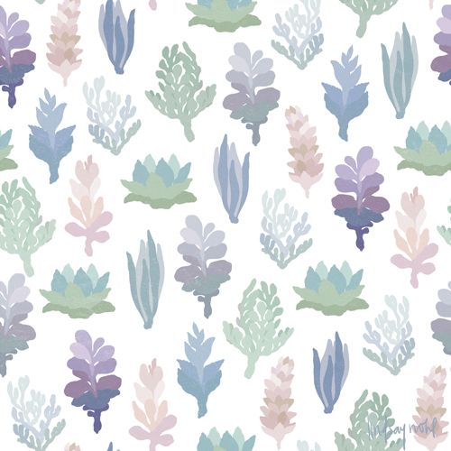 Succulent plant pattern by Lindsay Nohl
