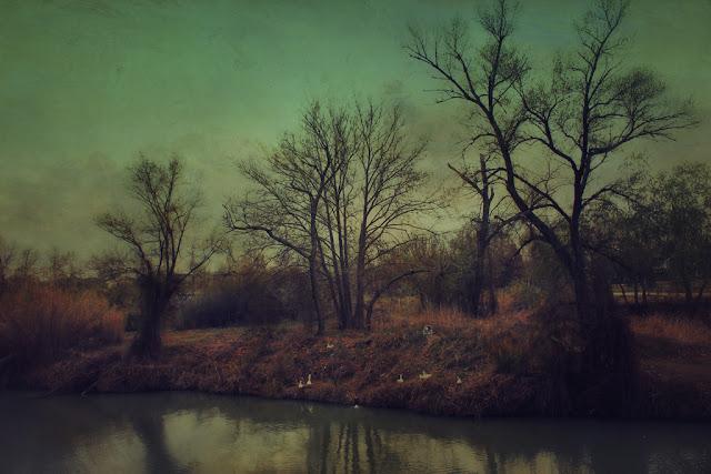 landscape art photo contemporary art  pictorialism