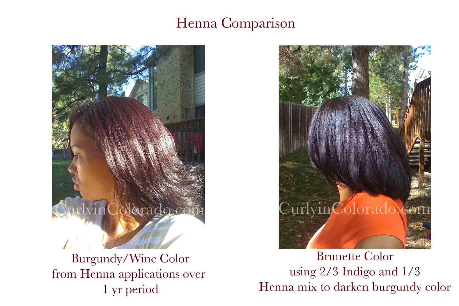 Henna And Indigo Results Curly In Colorado