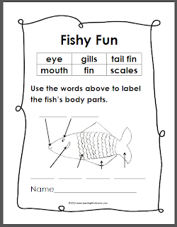Worksheets Labeling Of Of A Fish Body learning ideas grades k 8 simple fish anatomy diagram monday april 29 2013