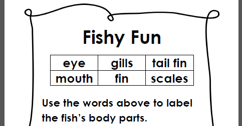 Learning Ideas - Grades K-8: Simple Fish Anatomy Diagram