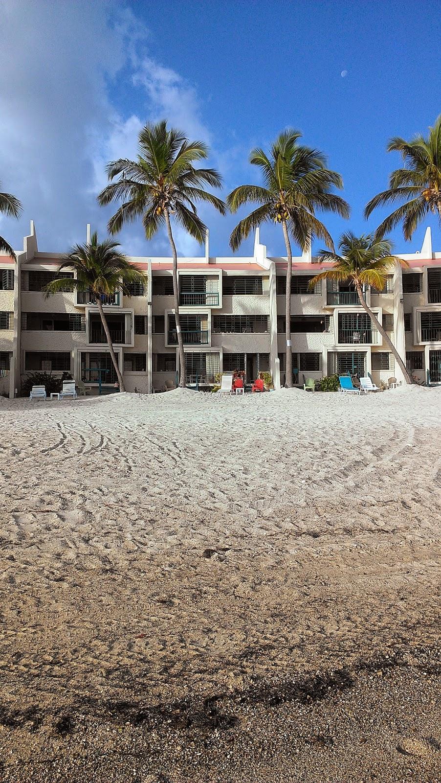 Sugar Beach Condos In Panama City Beach Fl