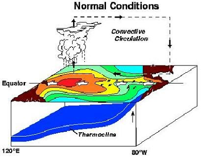 geography el nino Test your knowledge of the effects of el nino with a printable worksheet and interactive quiz the practice questions help you identify the most.