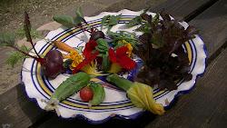 Ensalada de mini-verduras de la huerta de Jardín de Mar