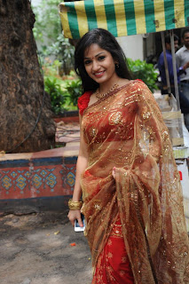 madhavi latha  Pictures in saree 9.jpg