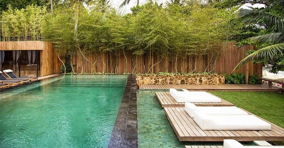 ideias vitaminadas curiosidades sobre o bambu