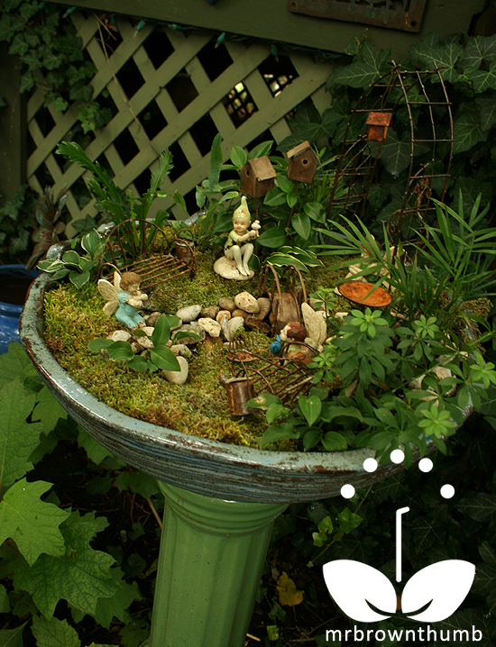 Fairy garden: Miniature garden in birdbaths