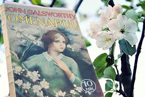 Katja/Lumiomena -blogi