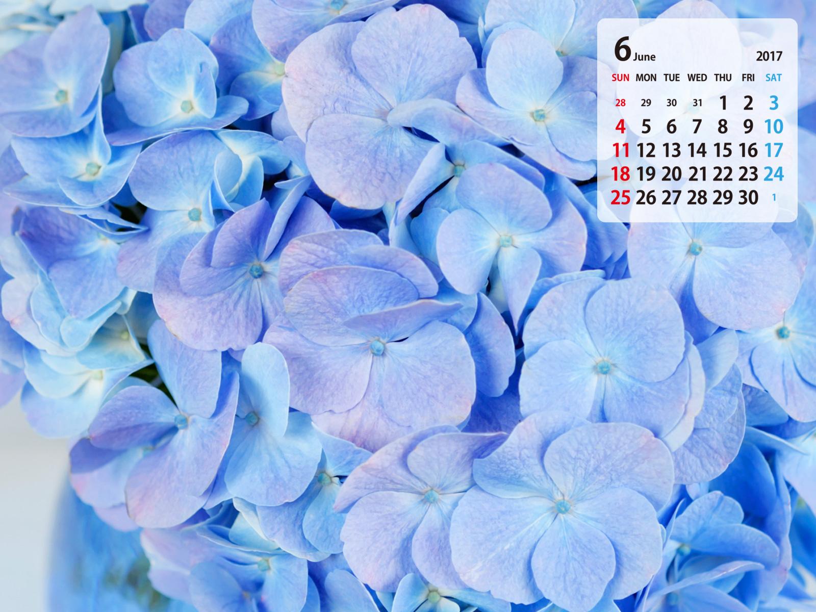 @ 壁紙.COM BY GMO2017 ★紫陽花(6月カレンダー)