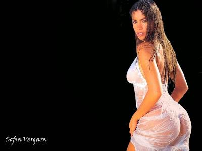 sofia_vergara_hottest