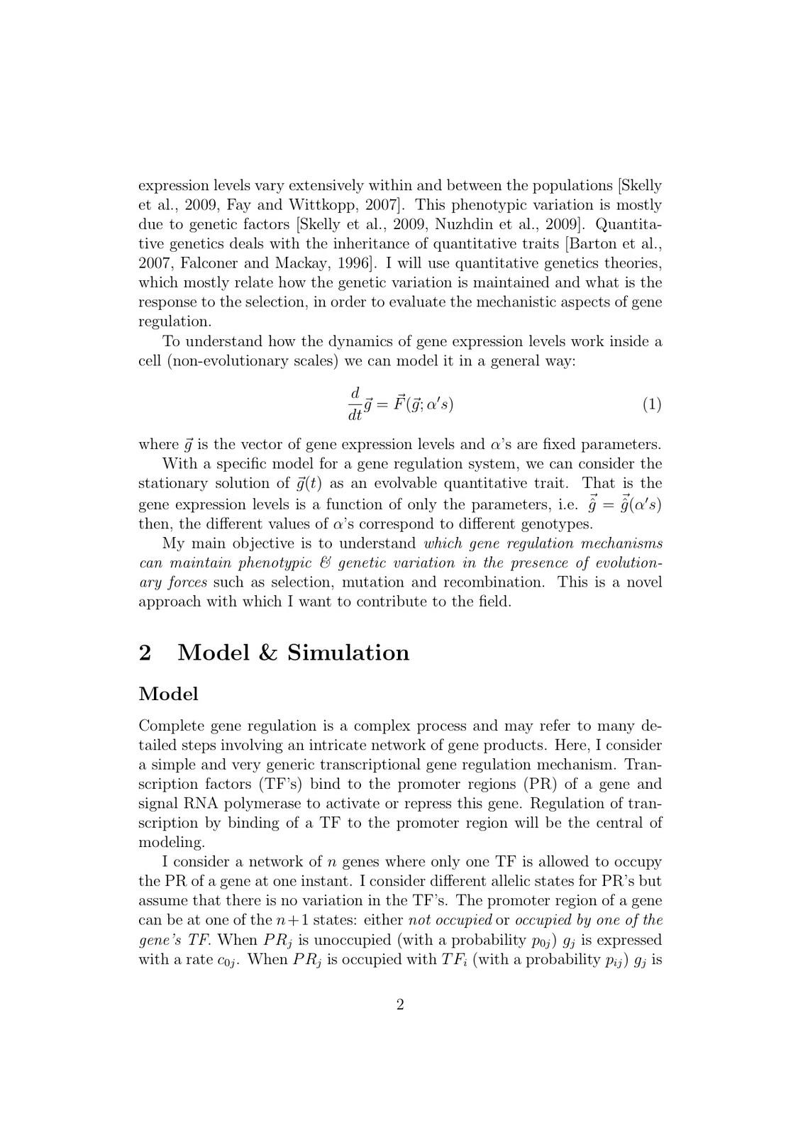 Process essay ornekleri