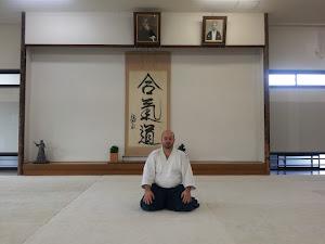 Sensei Sorin Despa, 5 Dan Aikido Aikikai - Hombu Dojo 2012