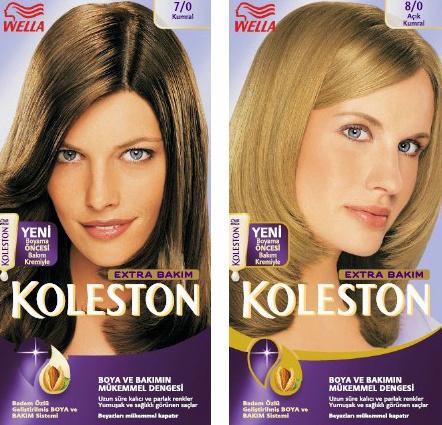 Boya Renkleri Koleston picture