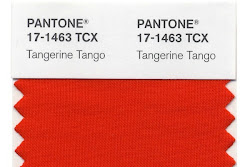 Pantone's color of the year 2012