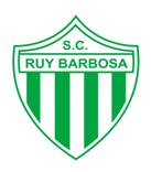 http://gremio-historia.blogspot.com.br/2015/01/gremio-fbpa-x-ruy-barbosa-poa.html