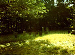 The old Burial grounds on Turtly Hill