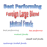 Top Performing Foreign Large Blend Mutual Funds 2013