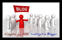 Investigative Blogger Crystal Cox
