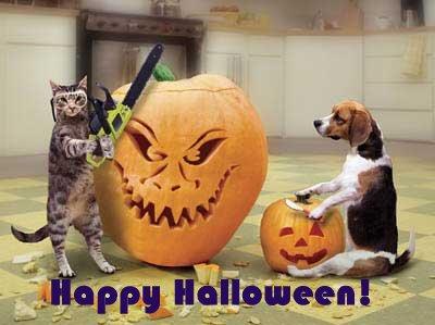 Frases e imagens engraçadas para o Halloween - Recados facebook Halloween