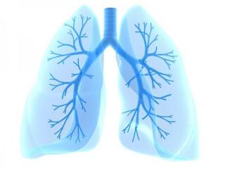 Trastornos respiratorios en la infancia