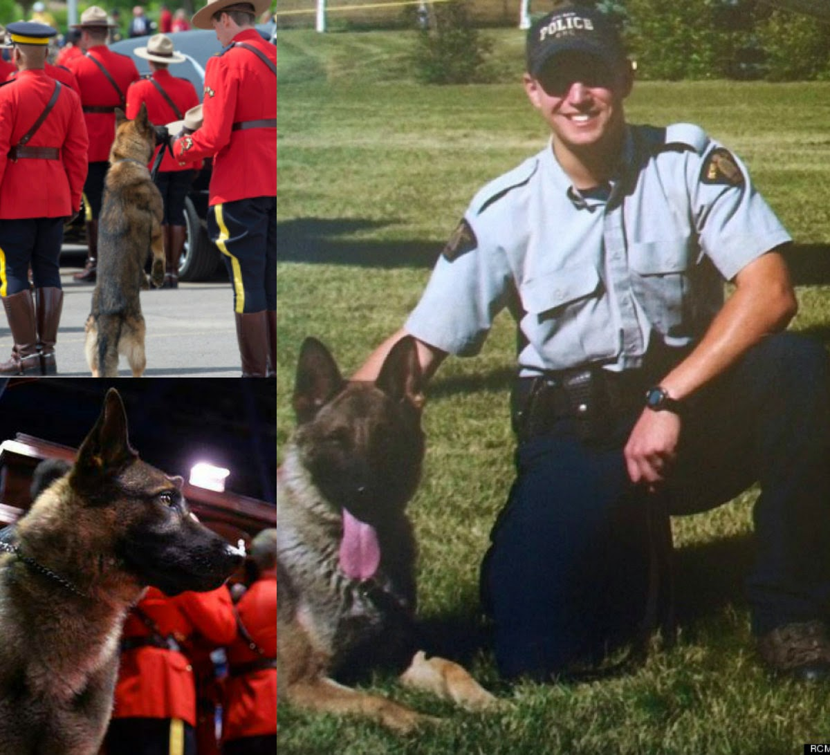Dog Of Killed Police Officer Cries At His Master's Funeral
