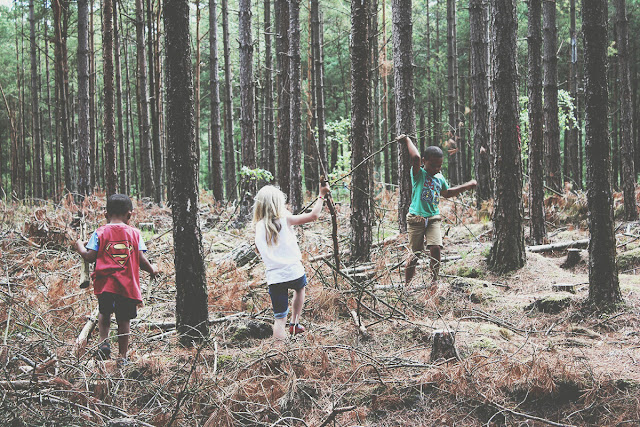 summer-story-kids-playing-in-the-forest-ringwood-todaymyway