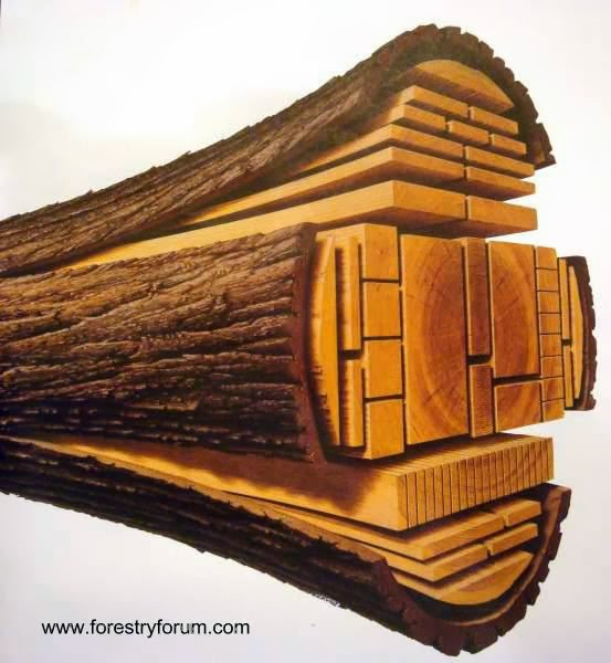Arquitectura de Casas: Construir casas de madera en Argentina.