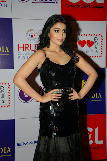 Actress Shriya Saran Latest Picture in Black Long Dress at CCL Charity Dinner 9