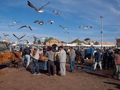 Maroko - Page 2 Maroko-slike