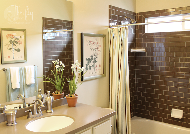 bathroom design ideas with brown subway tile