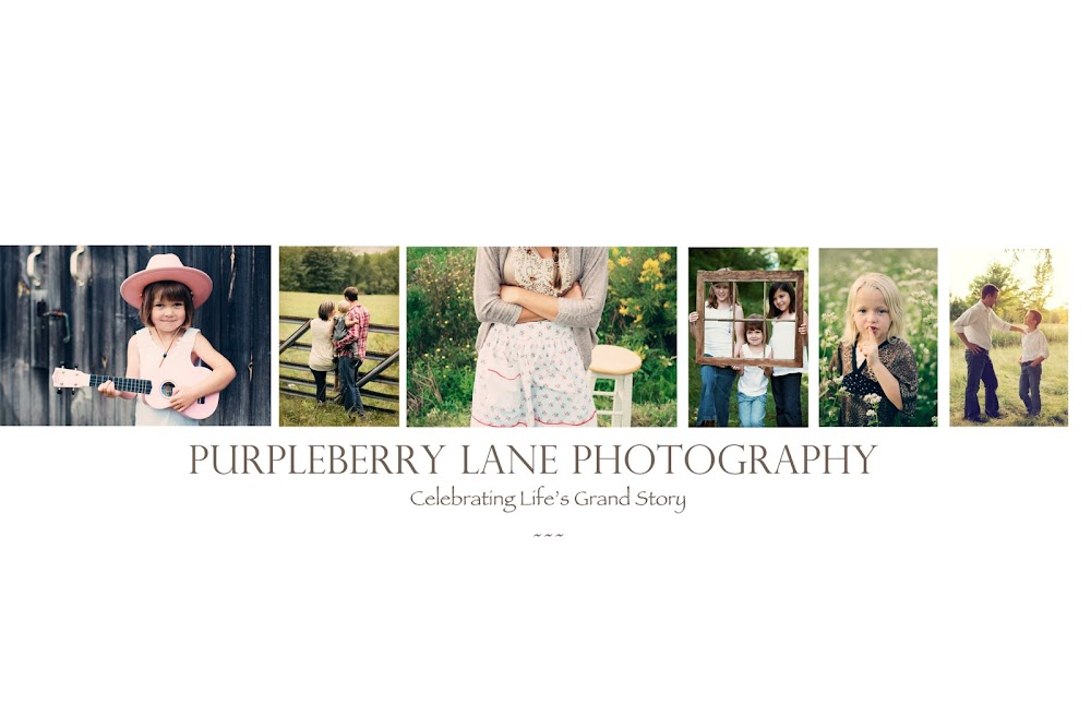 Purpleberry Lane Photography