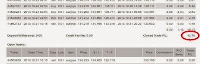 Výsledky obchodování na forexu - říjen 2013