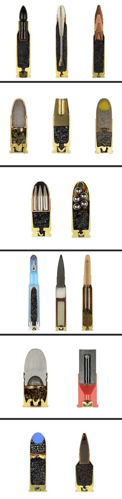 Cutaway Views of Various Ammunition Cartridges
