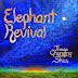 The Elephant Revival - The Changing Skies (Itz Evolving Records, 2013)