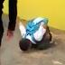Video Remaja Di Buli Jilat Jalan, Menyalak Seperti Anjing Jadi Viral