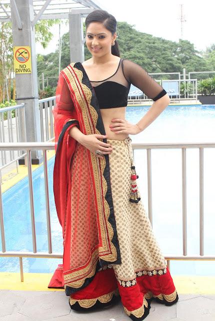 Tollywood Celebrities Nikesha Patel Photo Stills