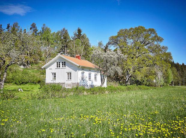 my scandinavian home an idyllic swedish summer cottage in orust. Black Bedroom Furniture Sets. Home Design Ideas