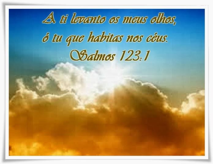 http://1.bp.blogspot.com/-mvgaqlJ-sHs/UqQ97fSj4mI/AAAAAAAAVk0/s7DjKJXHVg0/s1600/images.jpg