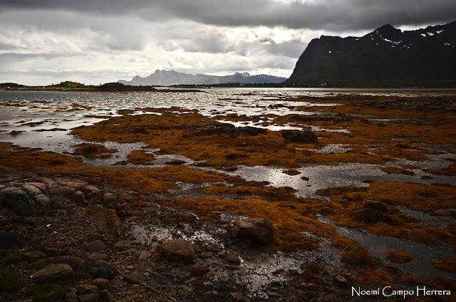 marea baja en islas Lofoten