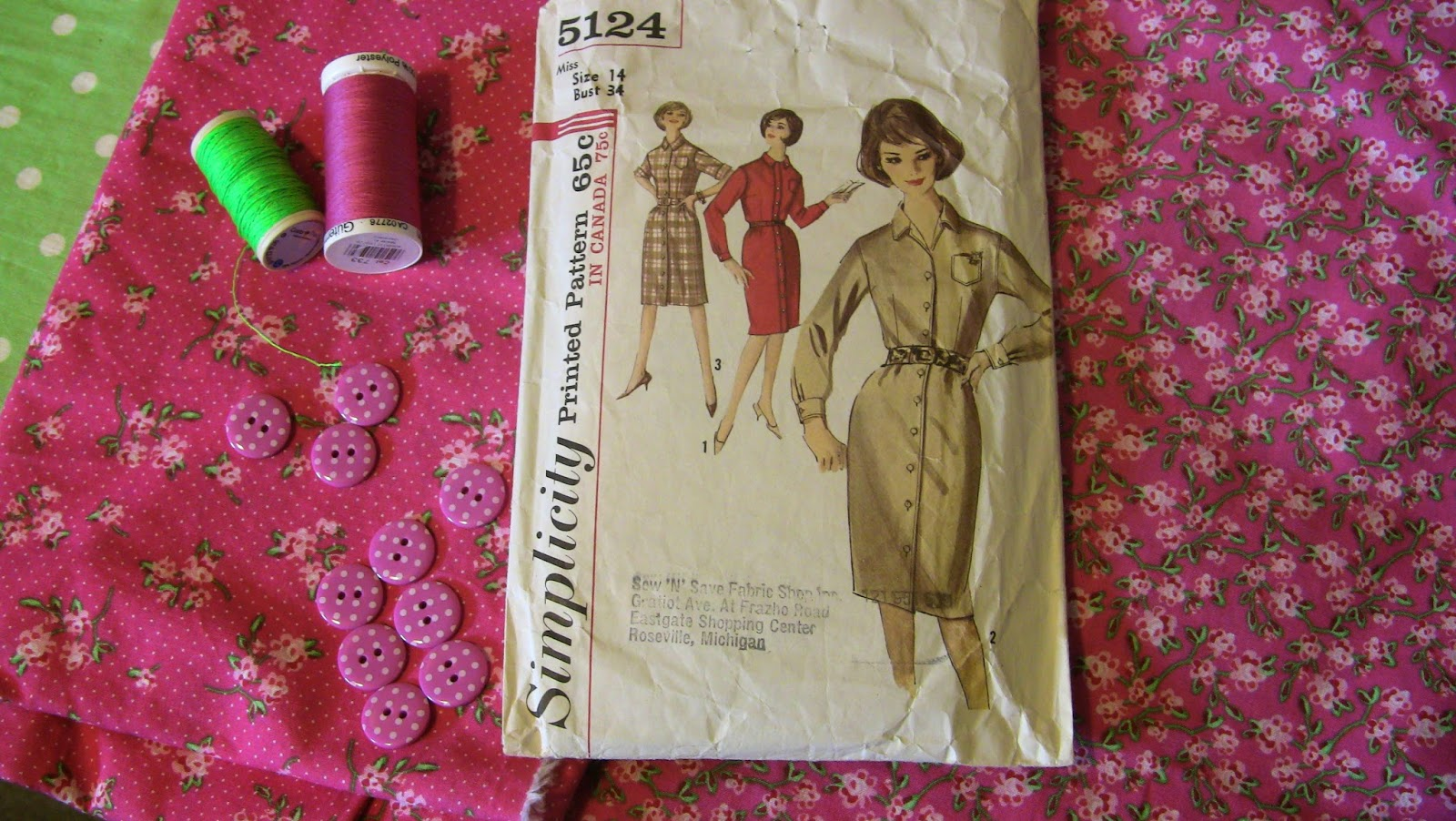 Simplicity 5124 shirtdress