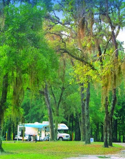Escapees Sumter Oaks RV Park, 4602 Co Road 673, Bushnell, Florida, United States
