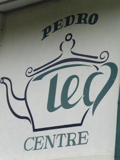 thé Nuwara Eliya