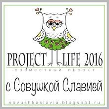 СП Project Life