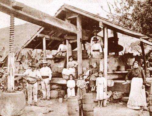 LOS LAGARES EN CANARIAS