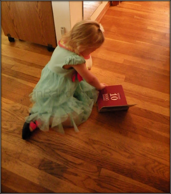niece with Jane Eyre