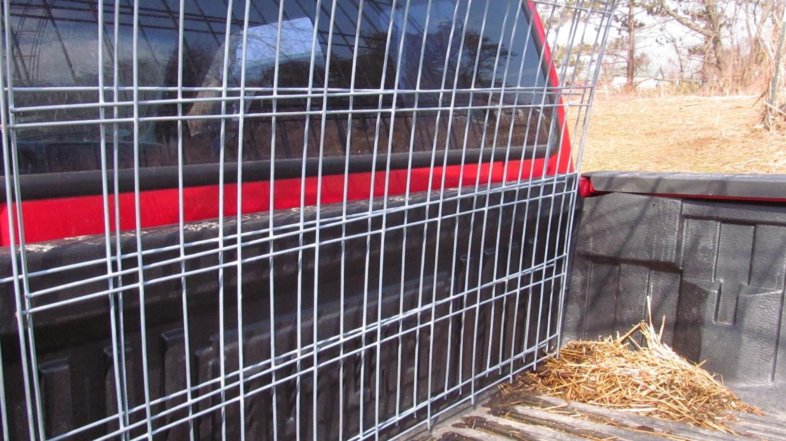 16 Ft Hog Wire Panels - WIRE Center •